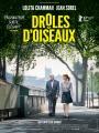 shellac-droles-doiseaux-affiche-2077.jpg