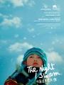 shellac-the-night-i-swam-poster-2219.jpg