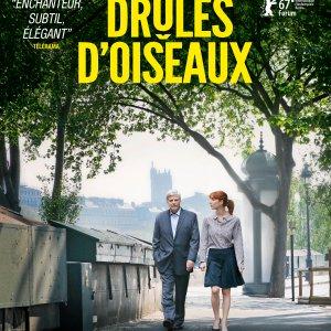 shellac-droles-doiseaux-image-2078.jpg
